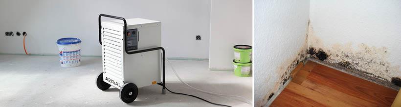 Wir beseitigen Feuchtigkeitsschäden an Gebäuden und Gegenständen.