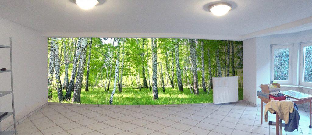 Individuelle Fototapete Birkenwald Fitnessraum Fotomontage