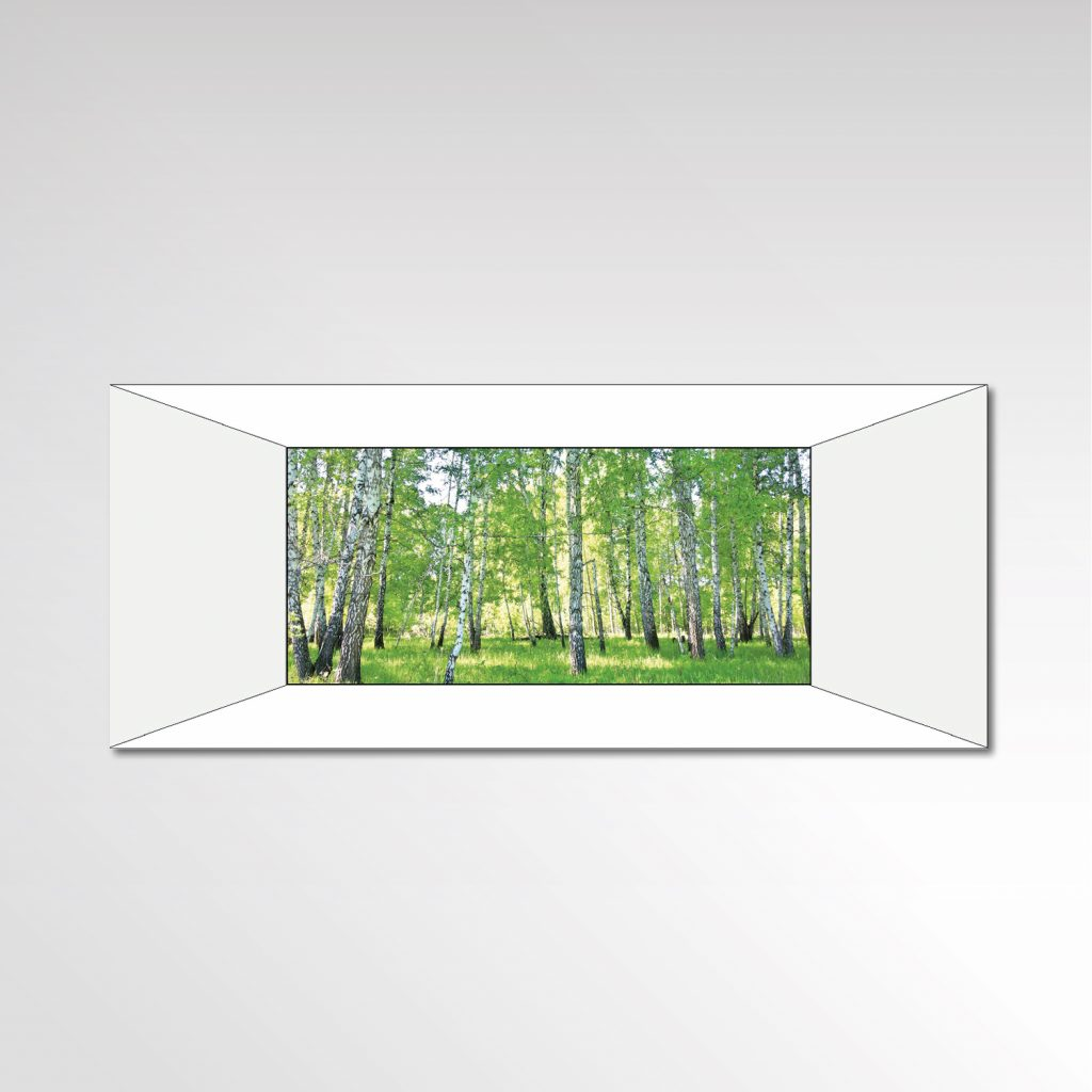 Fitnessraum individuelle Fototapete Birkenwald Entwurf Layout