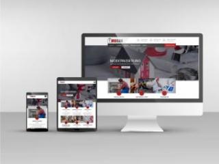 Responsive Webdesign Gemosan Website